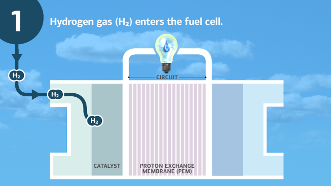 "A fuel cell (labeled as ""catalyst""), ""proton exchange membrane (PEM),"" and ""circuit,"" are pictured under a lightbulb with a water droplet as the filament. The background is the sky. At the top left is a ""1,"" signifying step one in the process, with arrows showing Hydrogen gas (H2) entering the fuel cell. Text, ""Hydrogen gas (H2) enters the fuel cell,"" is written as a description of this step."